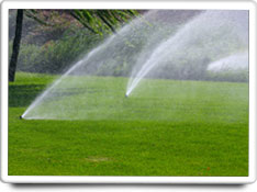 automatic sprinklers care