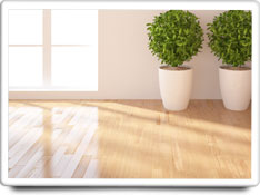 hardwood floors care