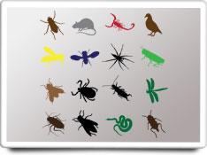 pest control care