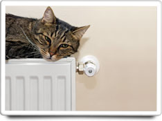 radiators care
