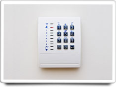 security system care