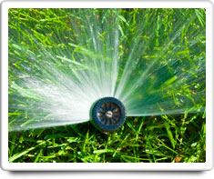 image of automatic sprinklers