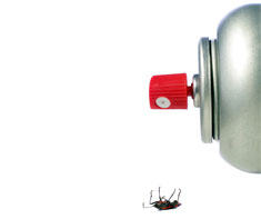 image of pest control