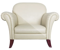 image of furniture (leather)